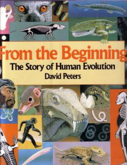 evolution David Peters c